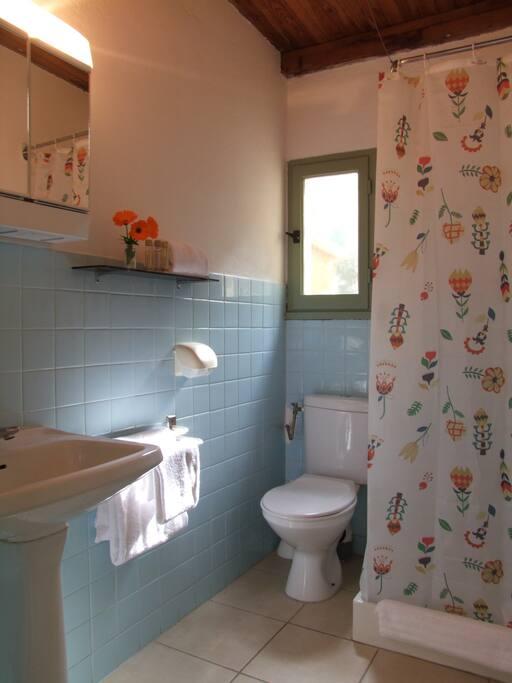 La salle de douche et les wc