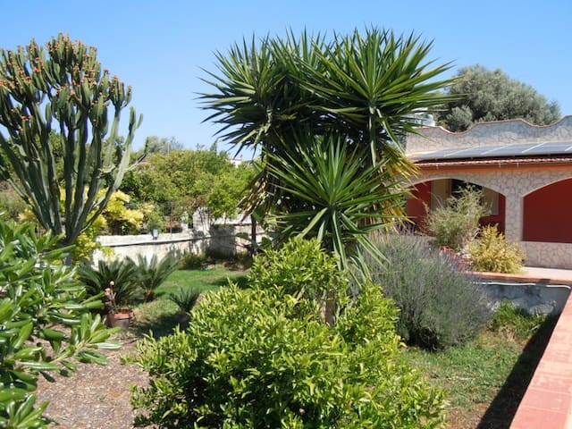 Villa Rossa elegante pieno relax  - Fanusa - House