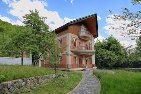 Дом в Красной Поляне( Эсто-садок) - Esto-Sadok