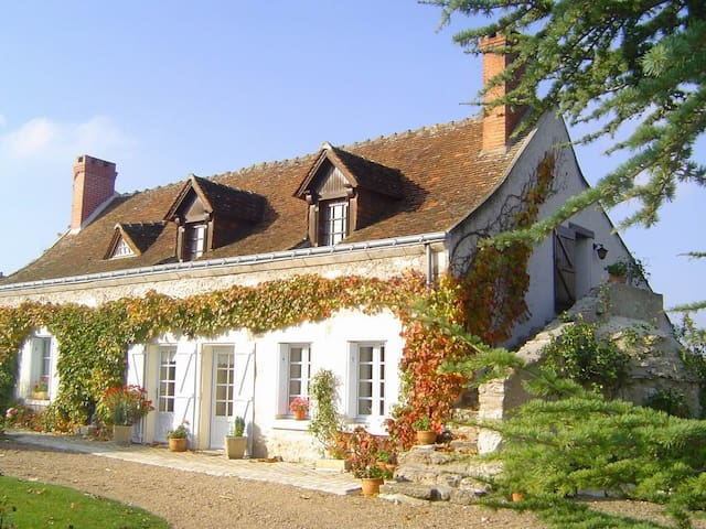 Lovely cottage near the Loirecastle - Dolus-le-Sec - Hus