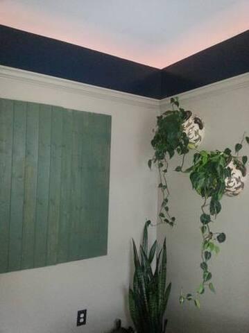 Cozy Garden Room in Heart of NB