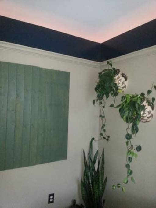 Cozy garden room in heart of nb apartments for rent in for Garden rooms jersey