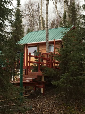 Alaska Cabin on Private Lake - Soldotna