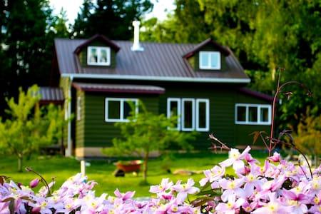 Heron's Nest Cottage--Walk to town! - Bed & Breakfast