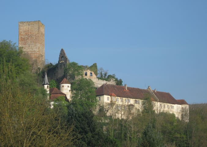 Holiday on a medieval castle - Bad Rappenau - Heinsheim - Appartement