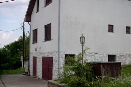 Villa Sale - Sremska Kamenica