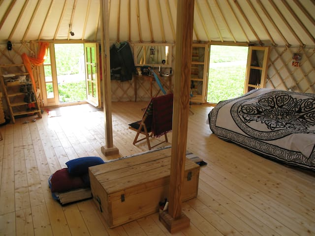 Magical space in yurt surrounded by nature