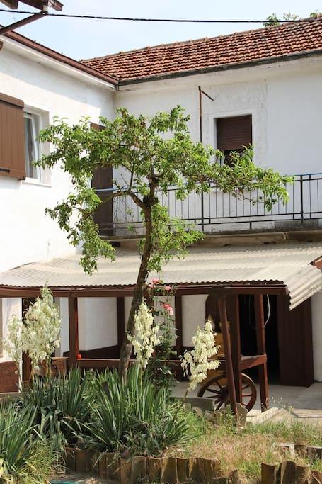 Garten mit überdeckter Terrasse