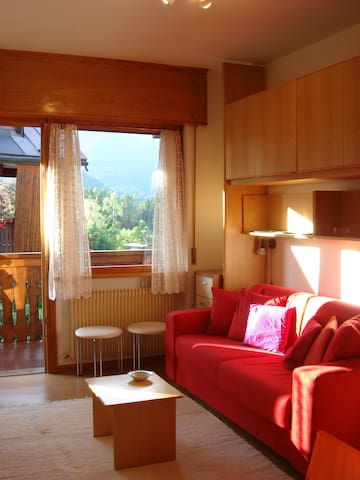 """CASATARVISIO CT1"" - Studio in the countryside 2p - Tarvisio - Apartment"