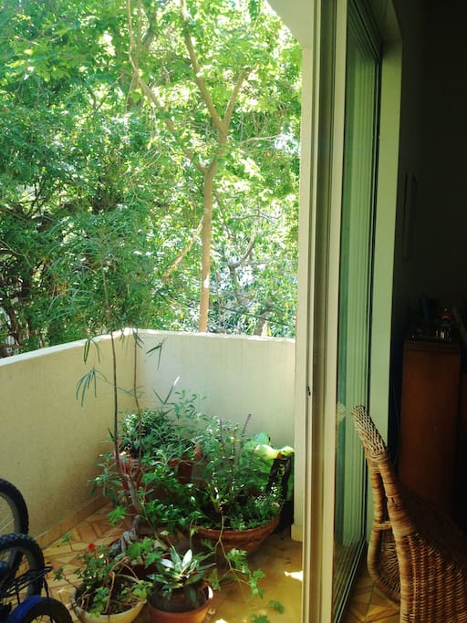 the balcony is shaded with trees.
