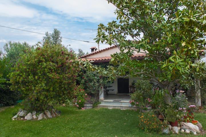 Entire house in estate - Near Beach - Marathonas Beach - Agios Panteleimon - House