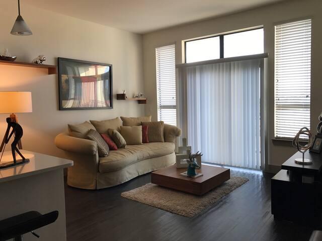 Pleasure and luxury apartment