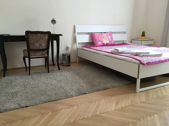 Cozy room in quite centre - Budapest - Appartement