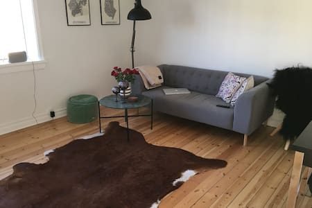 Great apartment close to the city - Copenhagen
