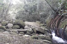 Cachoeira da Praia Preta