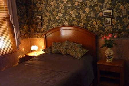 Beautiful room in English house - Pachuca de Soto