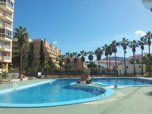 Comfy apartment in Las Americas with ocean view