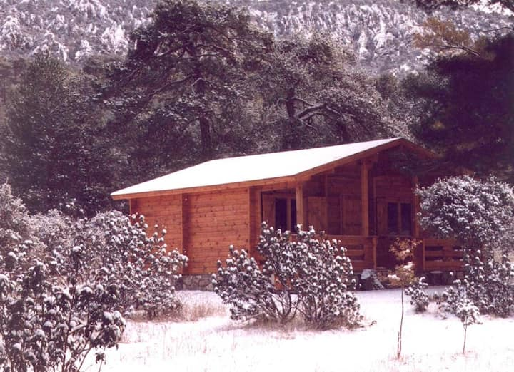 Cabañas Llano de los Conejos. Cabaña Grande 2