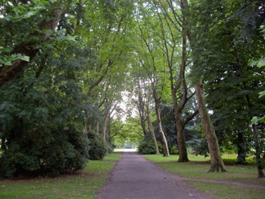 Fog Lane Park - less than 50m to this green paradise