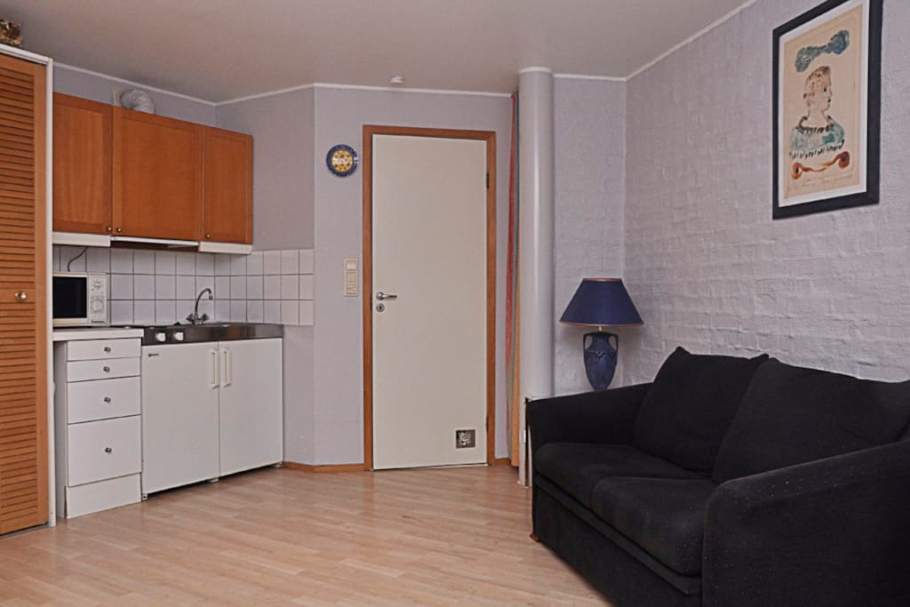 Kitchen-area equipped for self-catering, microwave and refrigerator.