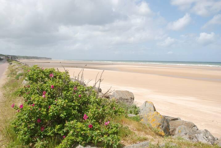Face à la mer - Saint-Laurent-sur-Mer - House