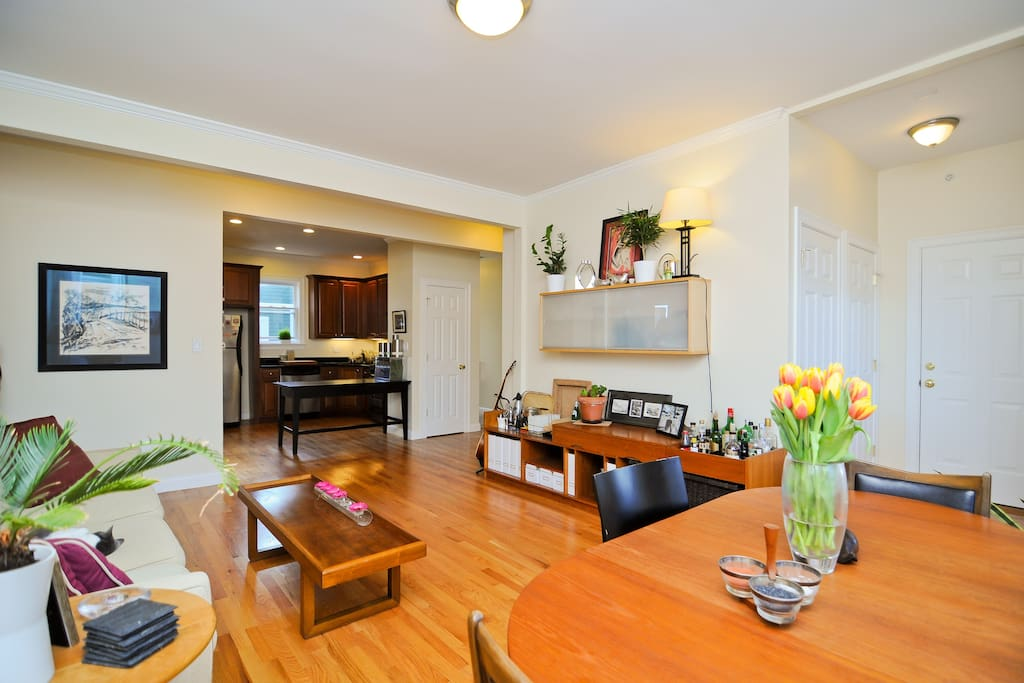 Large, open living/dining area flows into well-stocked, newly renovated kitchen.