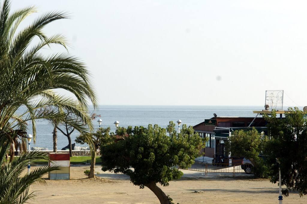 Situado en primera línea de playa, con vistas al mar (Zoom)