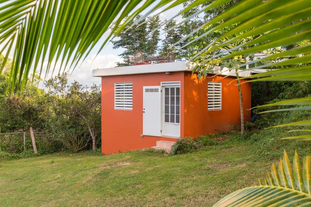 A cute cozy cabana under a shady mango tree -The Mango Cabana!