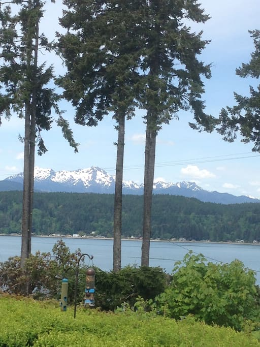 View of Hood Canal and the Olympics from the deck (Mt. Washington...can you see George's profile?).