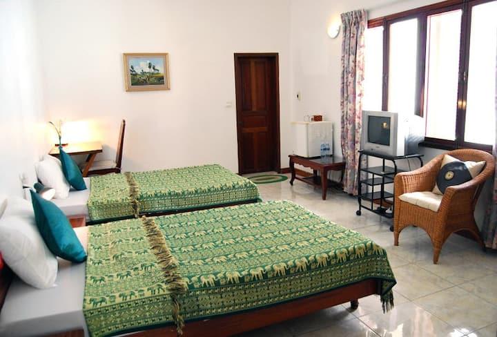Twin bedroom with tropical garden