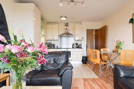 Friendly double bedroom apt with private bathroom - Dublin