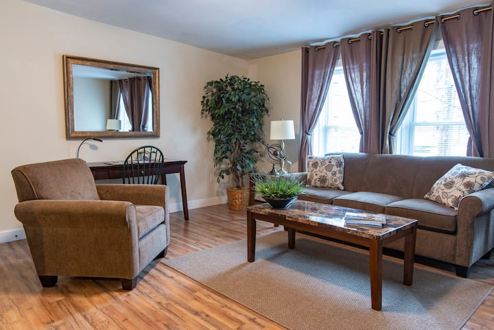 Heart of down town Ithaca and commons, 1br apt