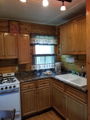 Kitchen area includes refrigerator and microwave