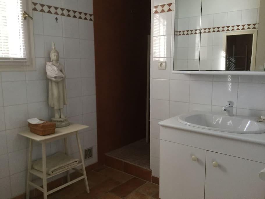 Ensuite bathroom with Italian shower