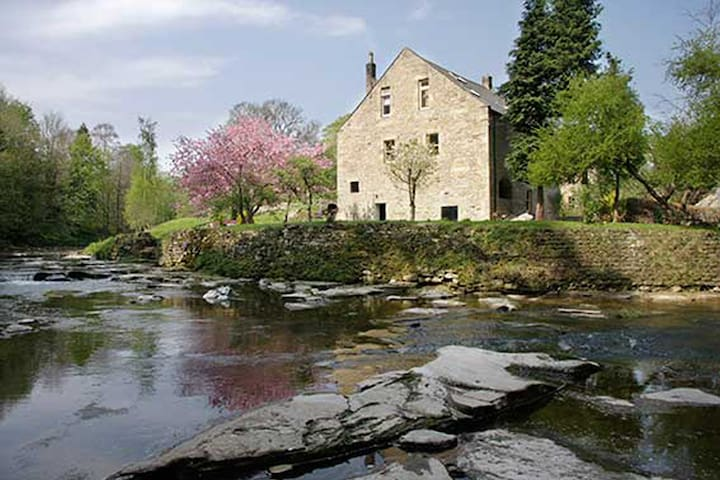 The Studio - Dilston Mill  - Corbridge - 家庭式旅館