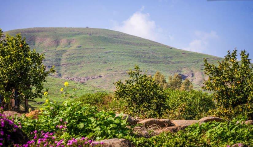 Galilee - Large 2 BD Garden Apt - Yavne'el - Pis