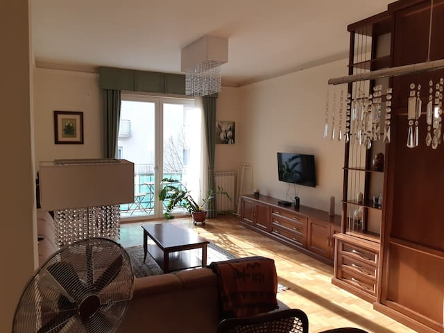 Sunny, comfortable flat with easy access to center