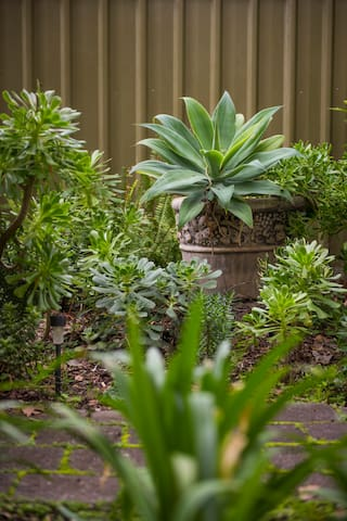 Lush courtyards in a quiet suburb