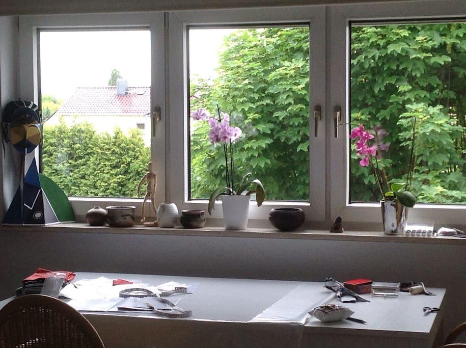Großes Fenster mit Rollos innen und außen  im Wohnzimmer , Blick in den Garten