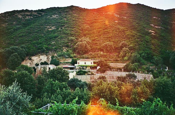 Villa Kamilakis escape to Nature
