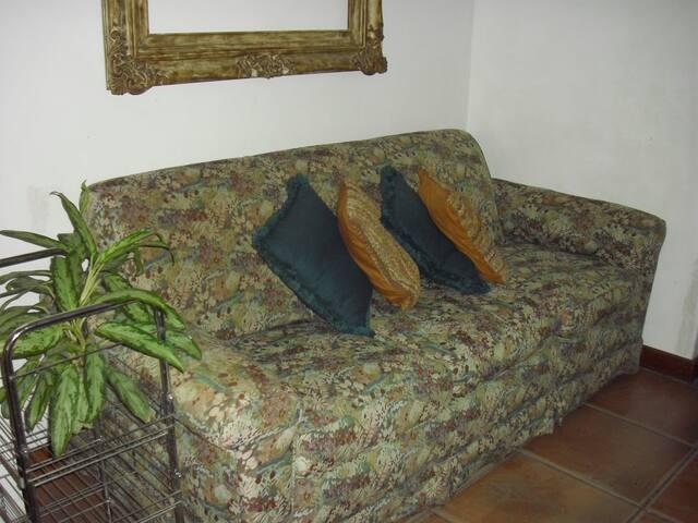Sofa grande si lo requiere se retira y se coloca una cama individual