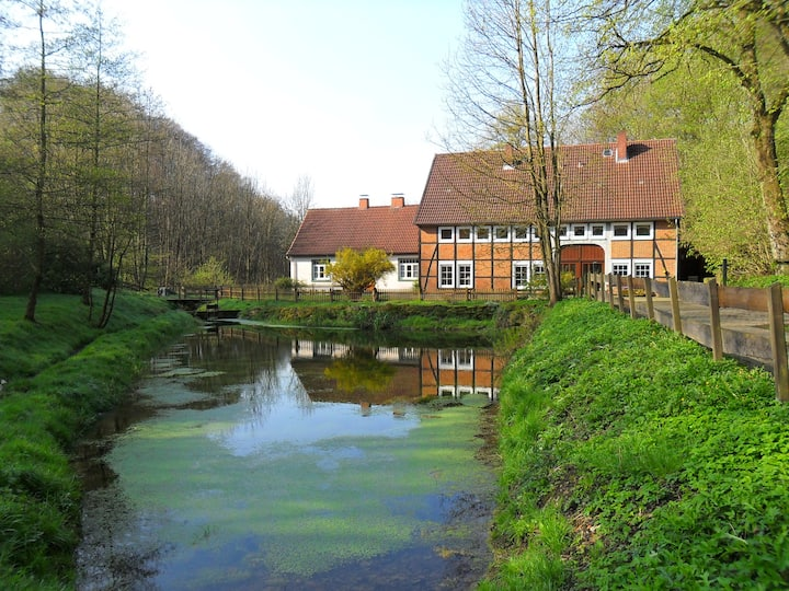 The old mill next to the waterfall
