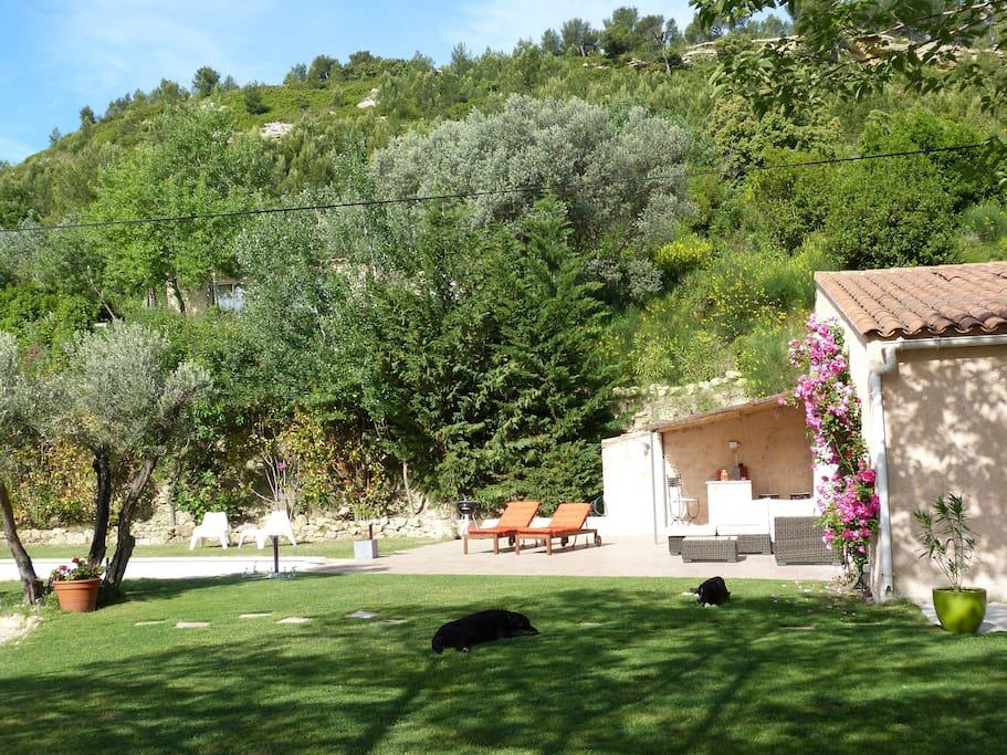 Vue de la terrasse ,piscine et pergola avec la garrigue en toile de fond.