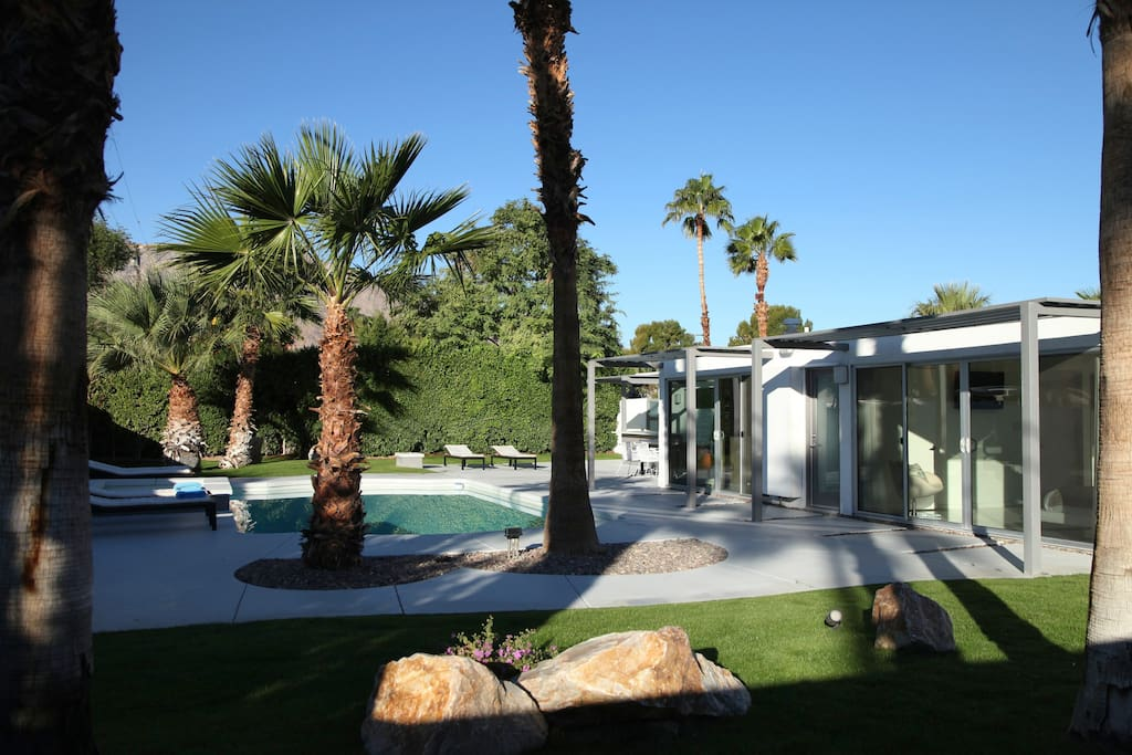 Relax by the pool surrounded by palm trees and blue sky