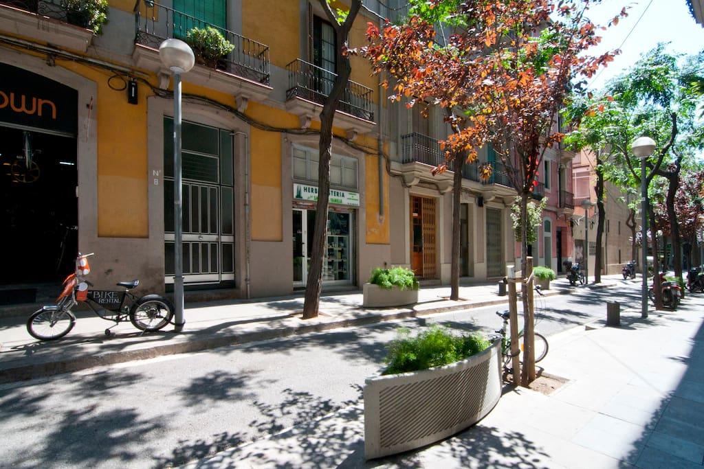 Quite and very beautiful street in one minute to Sagrada Familia