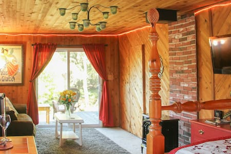 Lemon Moon Cottage - Sebastopol - Bungalow