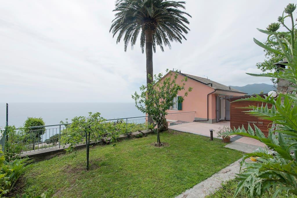 Angolo della casa con palma e vista mare
