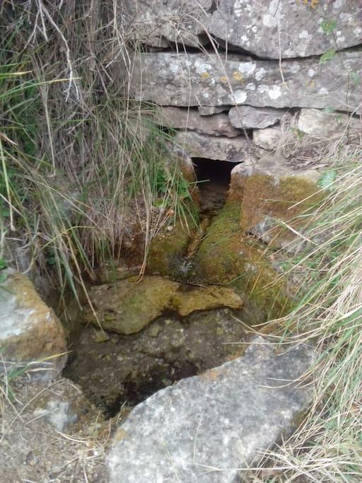 pequeña fuente cercana a la casa