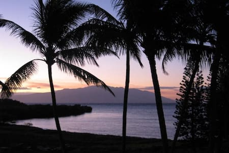 Molokai:1 BR Ocean Front Great View