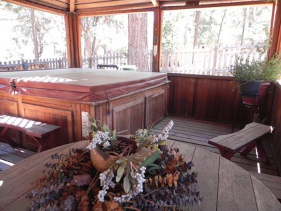 Gazebo area with hot tub
